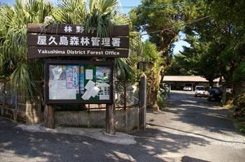森林管理署