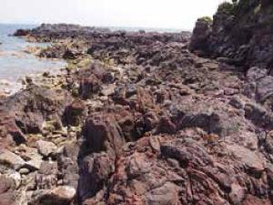 長崎鼻の地層