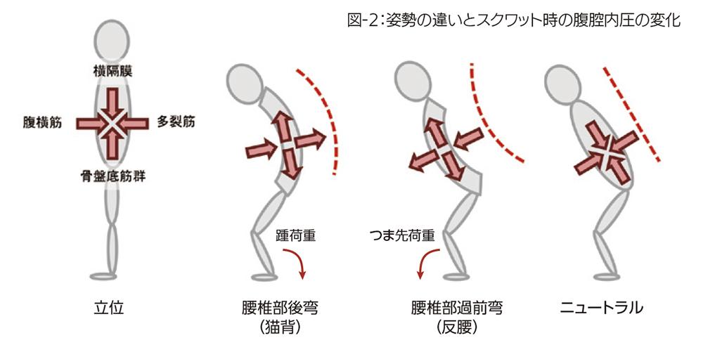 姿勢の違いとスクワット時の腹腔内圧の変化